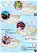バラ園祭り1.jpg